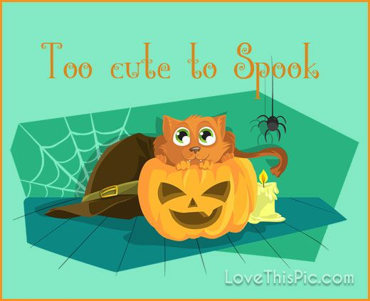 Too Cute To Spook Quotes Quote Halloween Humor Happy Halloween Trick Or  Treat