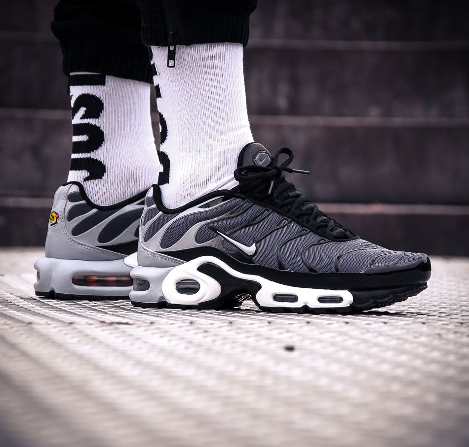 Grauer Air Max Plus TN