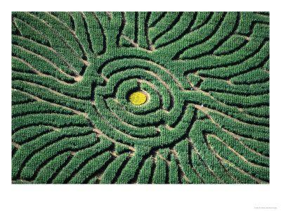 36d217b6cd61d0eb01ce2d9ab2bc0253 - Denver Botanic Gardens Corn Maze Hours