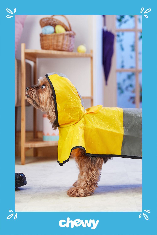 Rain or shine, the Frisco Dog Rainy Days Raincoat is a