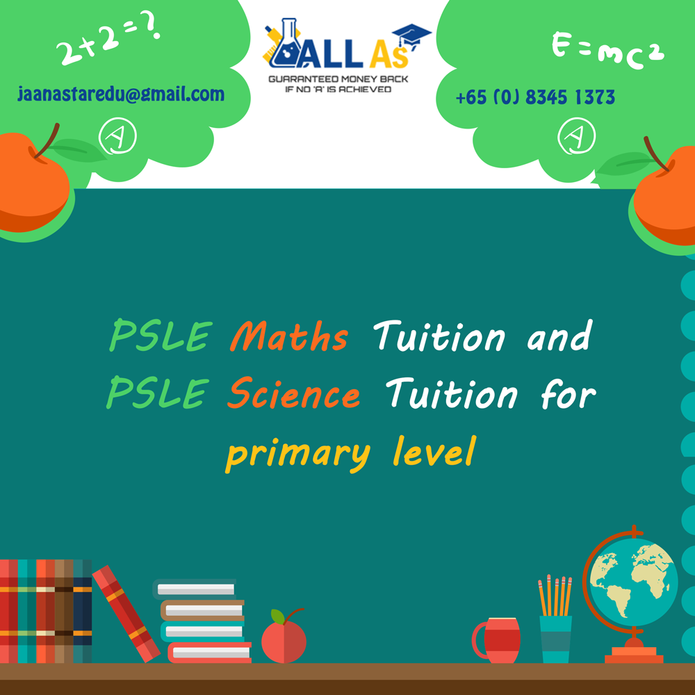 Psle Maths Tuition Primary And Secondary Maths Tuition O Level