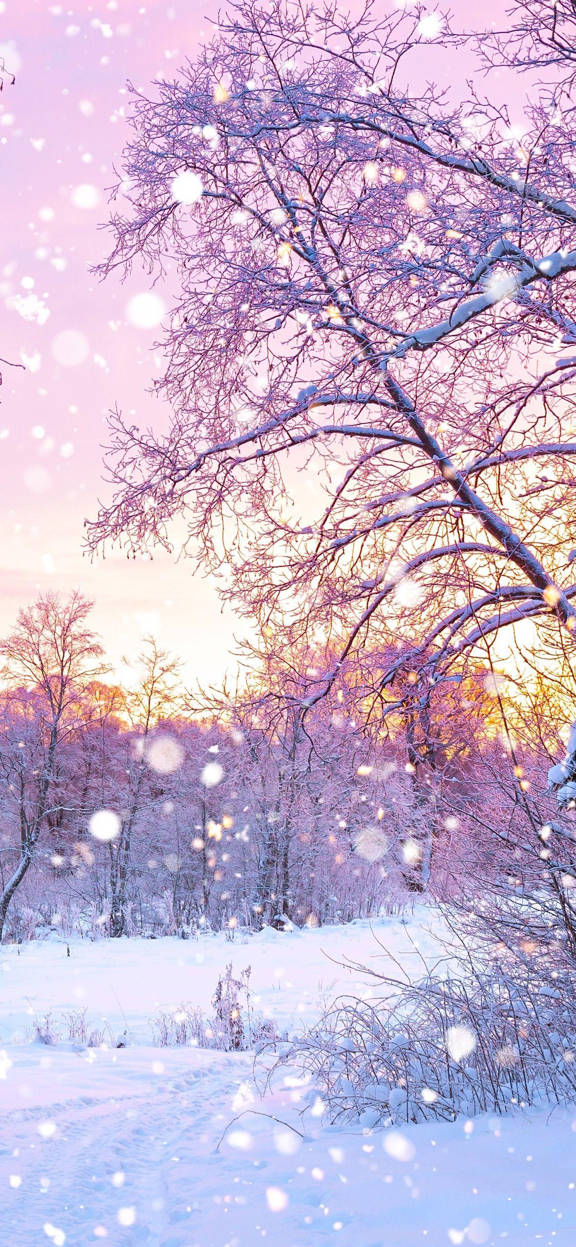 Snow Iphone Wallpaper Winter Wallpaper Beautiful Landscapes