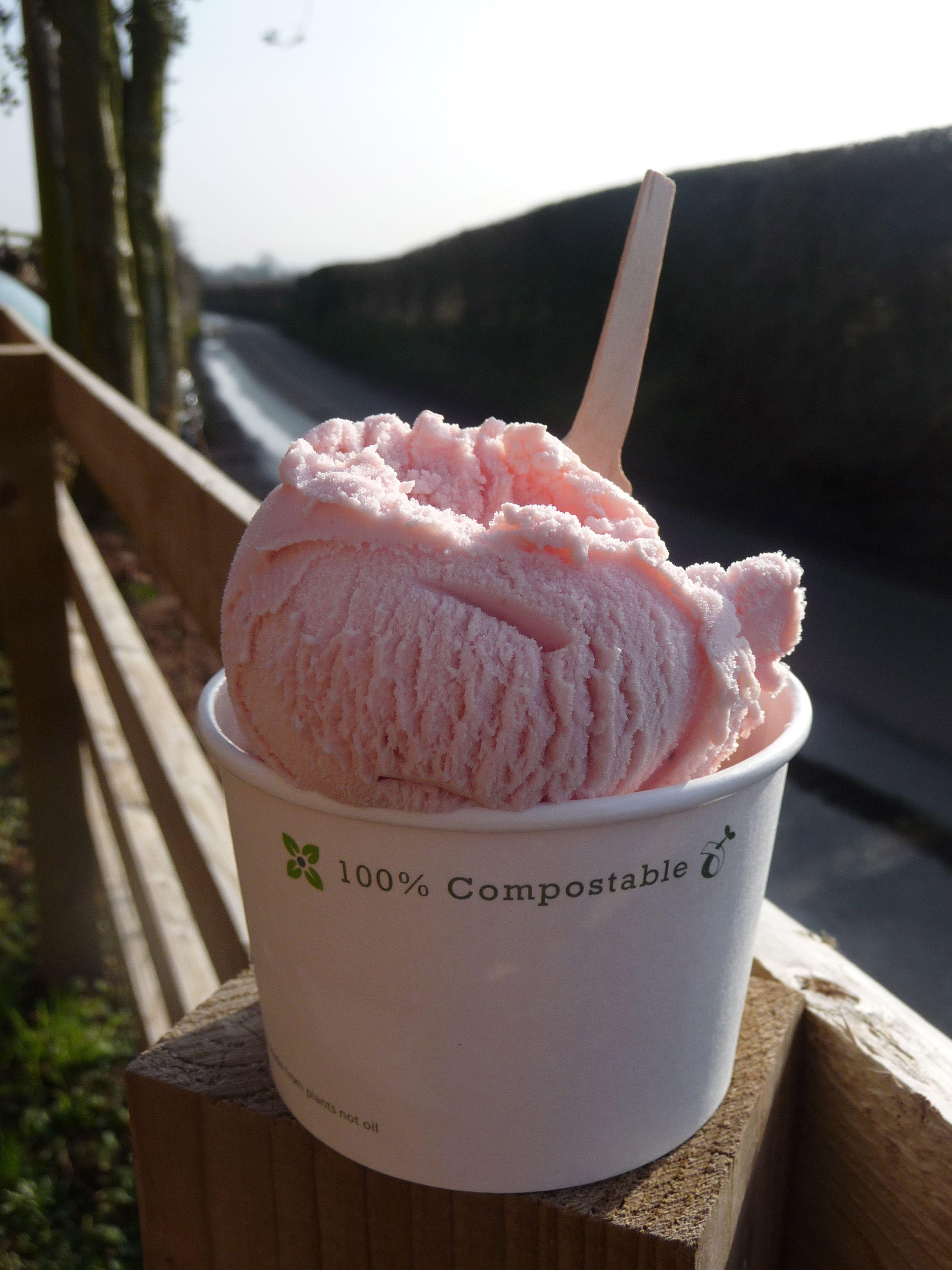 frozen yogurt van hire