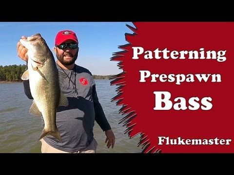 Bass Fishing - Finding a Pattern During the Pre-Spawn - YouTube