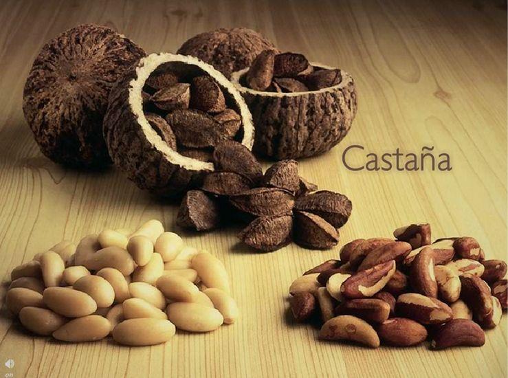 Castañas - El fruto de Natura para la hidratación y nutrición de tu piel.