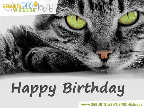 Tierische Geburtstagsgrüße Geburtstagsgrüße