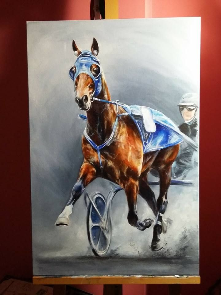 Timoko | Racehorses in art | Pinterest | Horses, Harness racing and