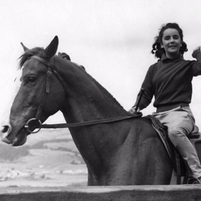 National Velvet Elizabeth Taylor Vintage Horse Horses