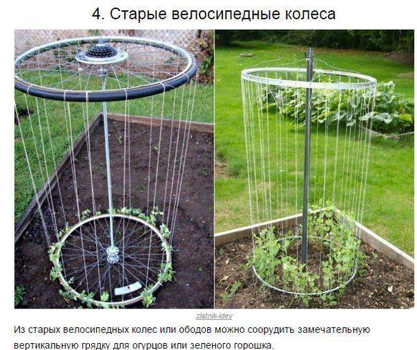 ДНЕВНИК ДАЧНИКА: дача, огород, сад, цветы
