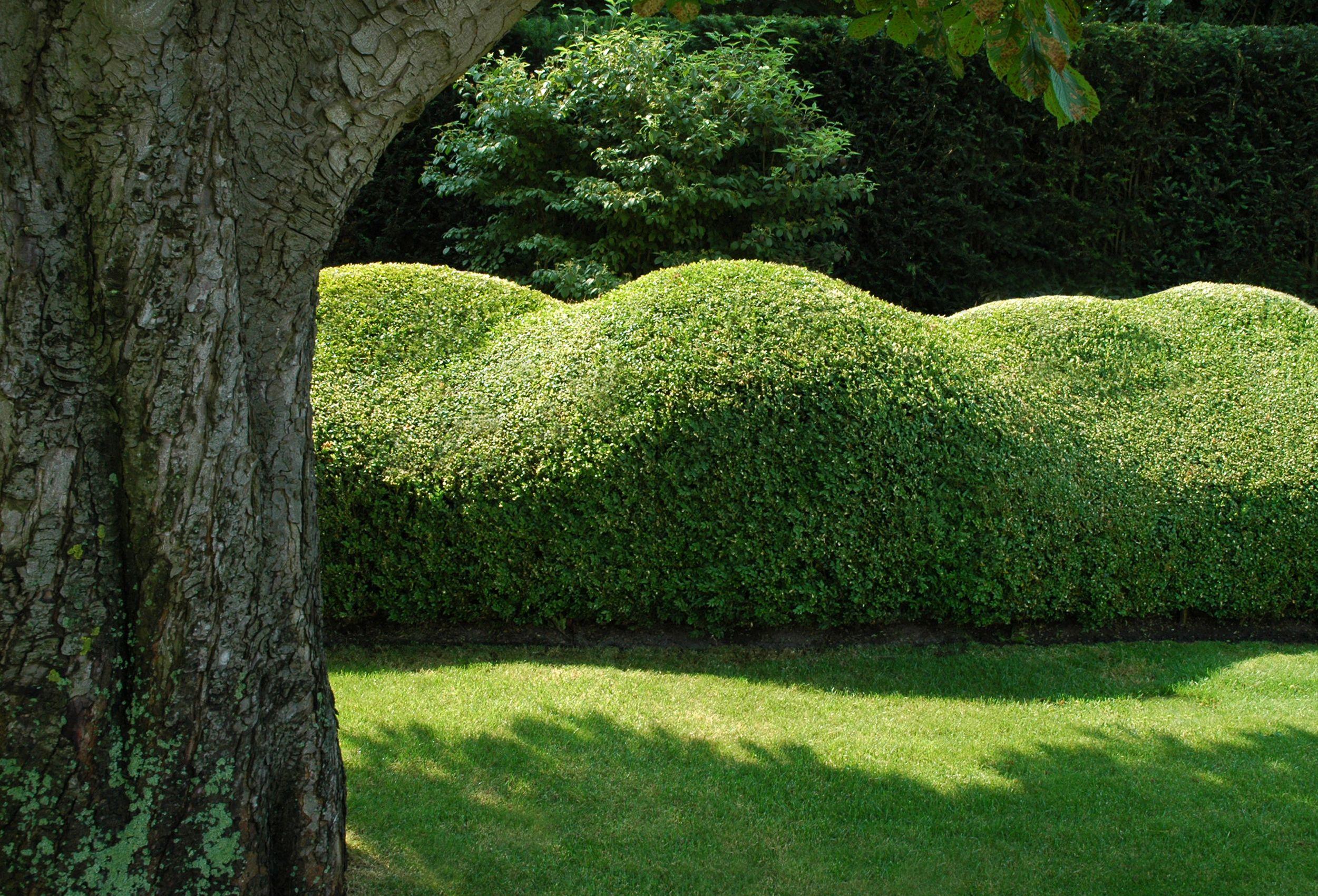 36d80d492910ee64c2c6c7d80c1f7515 Unique De Amenagement Jardin Paysager Des Idées