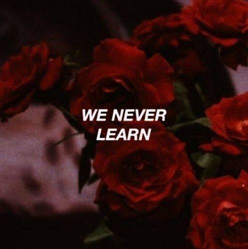 #Roses: https://ift.tt/2JvjHiV   Aesthetic words, Quote aesthetic, Red aesthetic