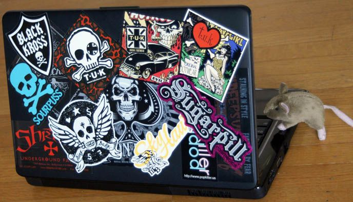 Decorated laptop stickers for laptop lid case for computer cool designs diy laptop
