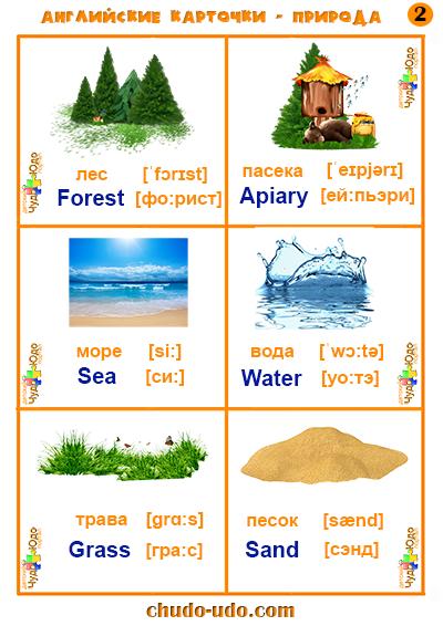 лес на английском языке с транскрипцией