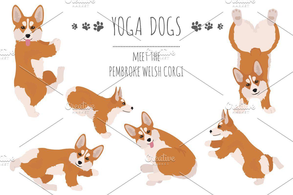 Yoga Dogs Collection Vol 1 Dog Yoga Corgi Dachshund Dog Doing Yoga
