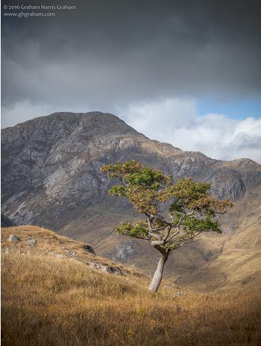 Beinn Bheag (736 m) es una montaña en las tierras altas del noroeste de Escocia. Se encuentra en la zona de Ardgour de Lochaber. #BeinnBheag #montaña #Highland #Ardgour #Lochaber #Escocia #Scotland #visitscotland #ReinoUnido #UK #ScopSpirit