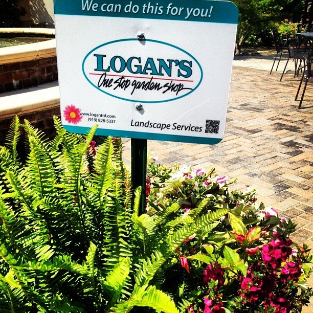 Loganu0027s Trading Co. One Stop Garden Shop Featuring Decorative Plants In  North Hills Of Raleigh