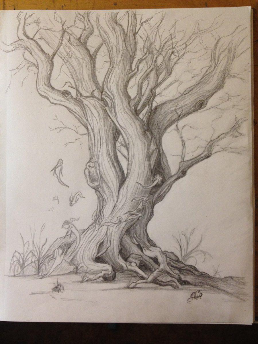 Fea Tree by GriffinsJoy on DeviantArt