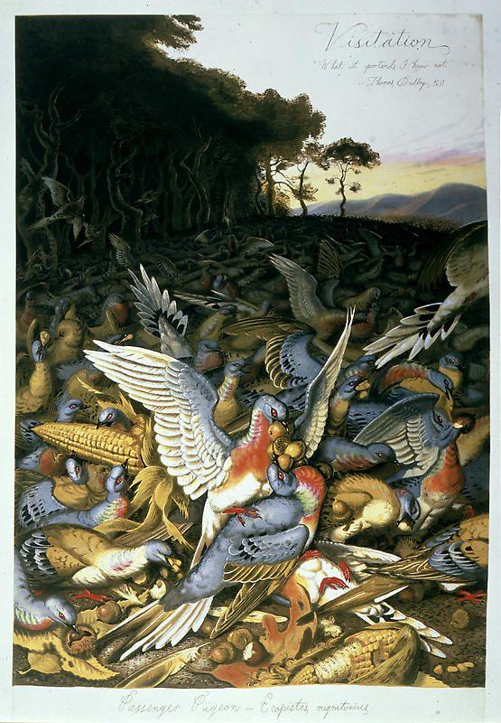 Artodyssey Художественные рисунки, Рисунки, Птицы