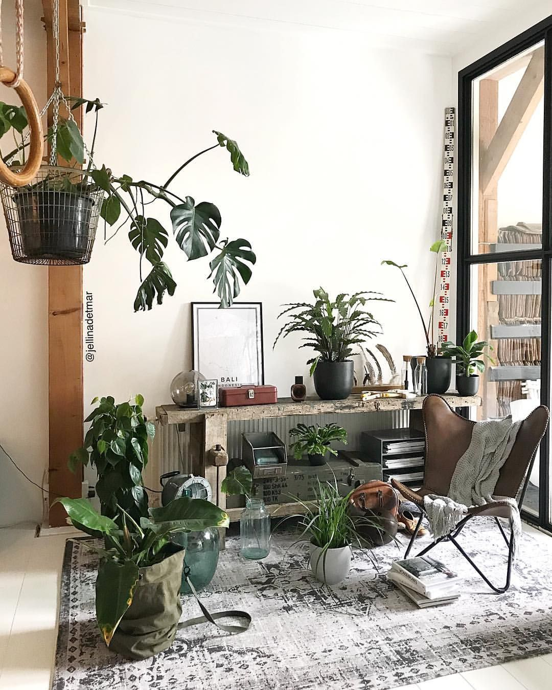 Pin by Mylène Colmar on Ideas for home | Pinterest | Plants ...