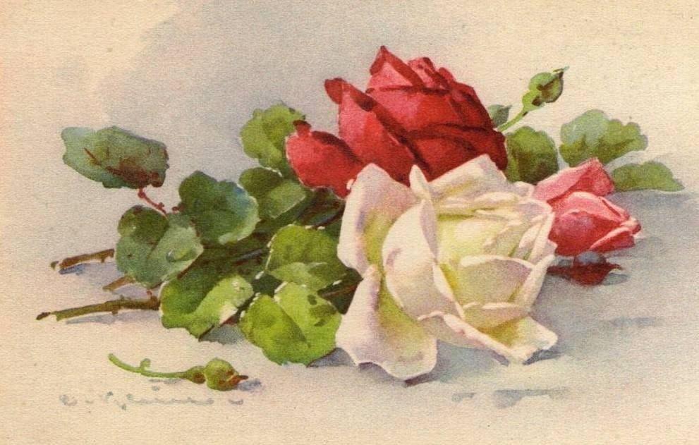 Старинная открытка розы
