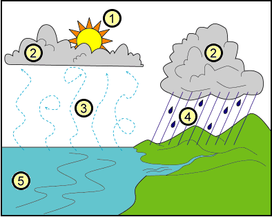 Cloud Lessons For First Grade Water Cycle Diagram School