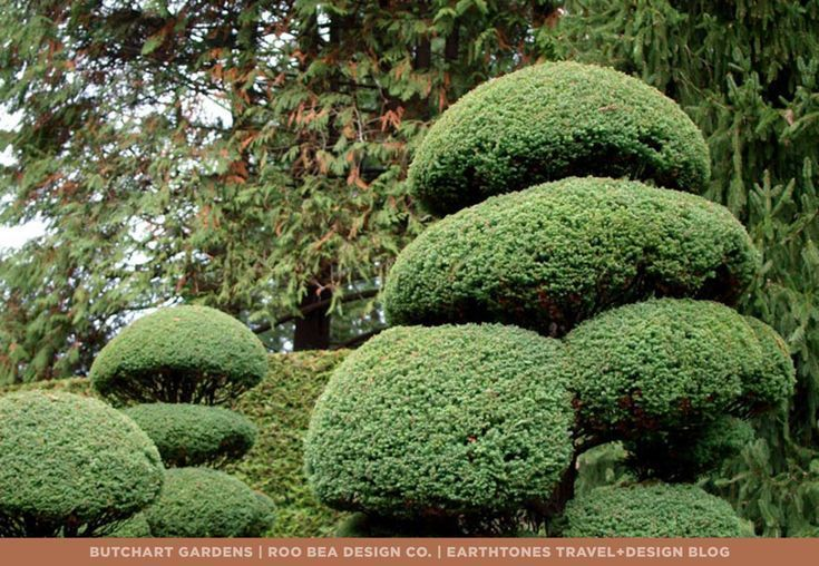 Landscape Inspiration for Your Backyard & Beautiful Flowers Bed Ideas   The Butchart Gardens. - #flowergardenaesthetic #flowergardenbeautiful #flowergardenbeds #flowergardendrawing #flowergardenpictures #butchartgardens Landscape Inspiration for Your Backyard & Beautiful Flowers Bed Ideas   The Butchart Gardens. - #flowergardenaesthetic #flowergardenbeautiful #flowergardenbeds #flowergardendrawing #flowergardenpictures #butchartgardens Landscape Inspiration for Your Backyard & Beautiful Flowers #butchartgardens