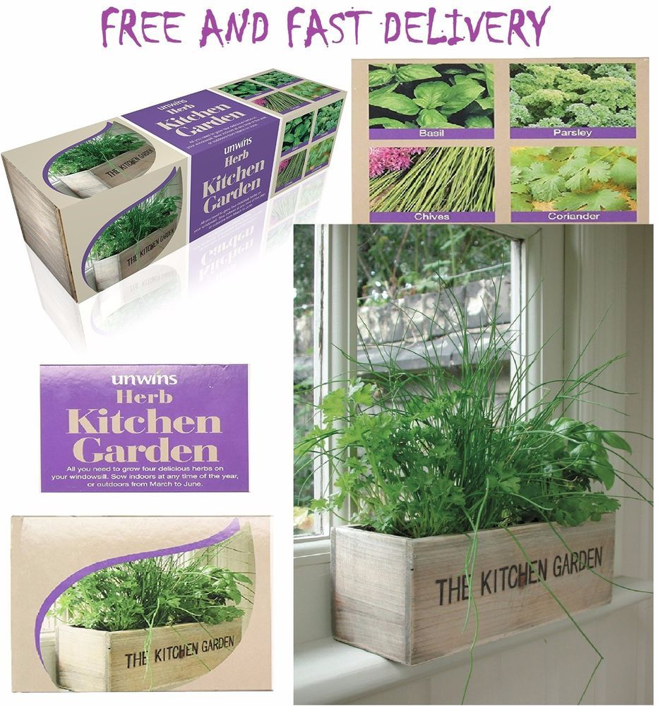 Herb Kitchen Garden Kit Details About Indoor Herb Kit Garden Kitchen Window Wooden Box