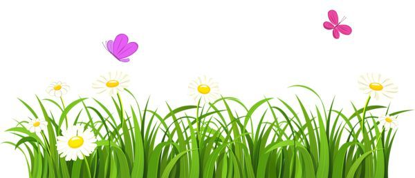 simple drawinds of grass and flowers - Google Search | Grass