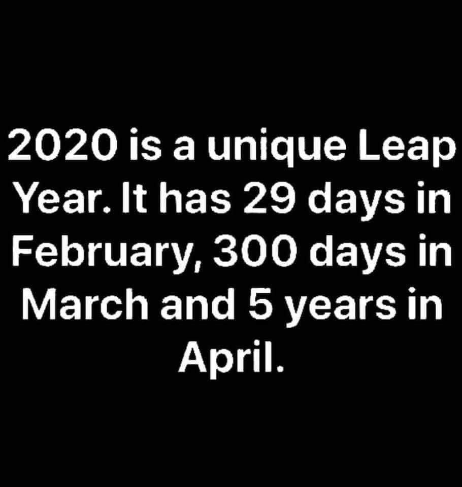 2020 Is A Strange Year Funny Quotes Funny Relatable Memes Funny