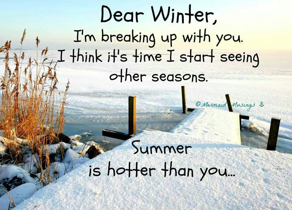Funny Winter Quotes And Sayings. Admittedly The Vis Is Better In Winter,  But The Water Is Sooooo Cold In SoCal In The Winter ..... ;)