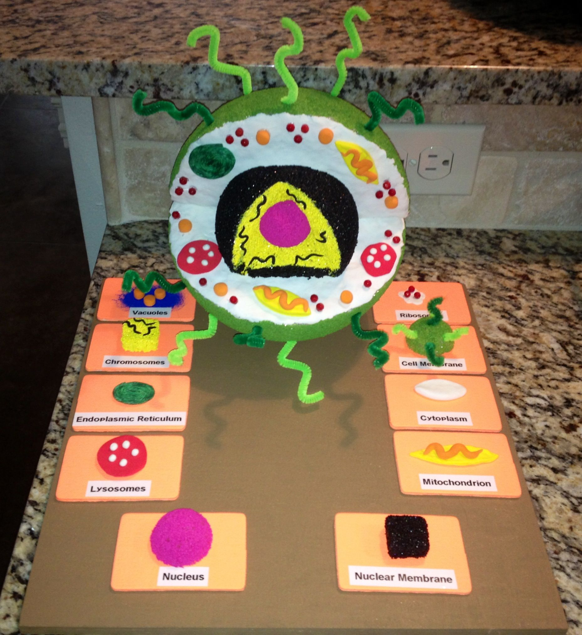 Great Project For Students To Do When Learning About The
