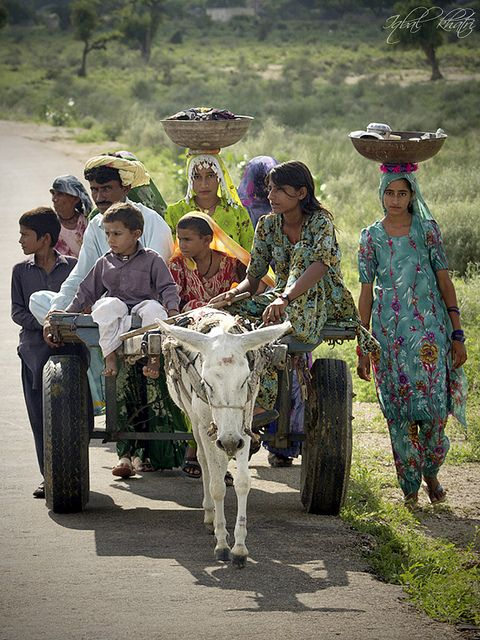 On the way to Home. | India, Indian and Deserts  On the way to H...