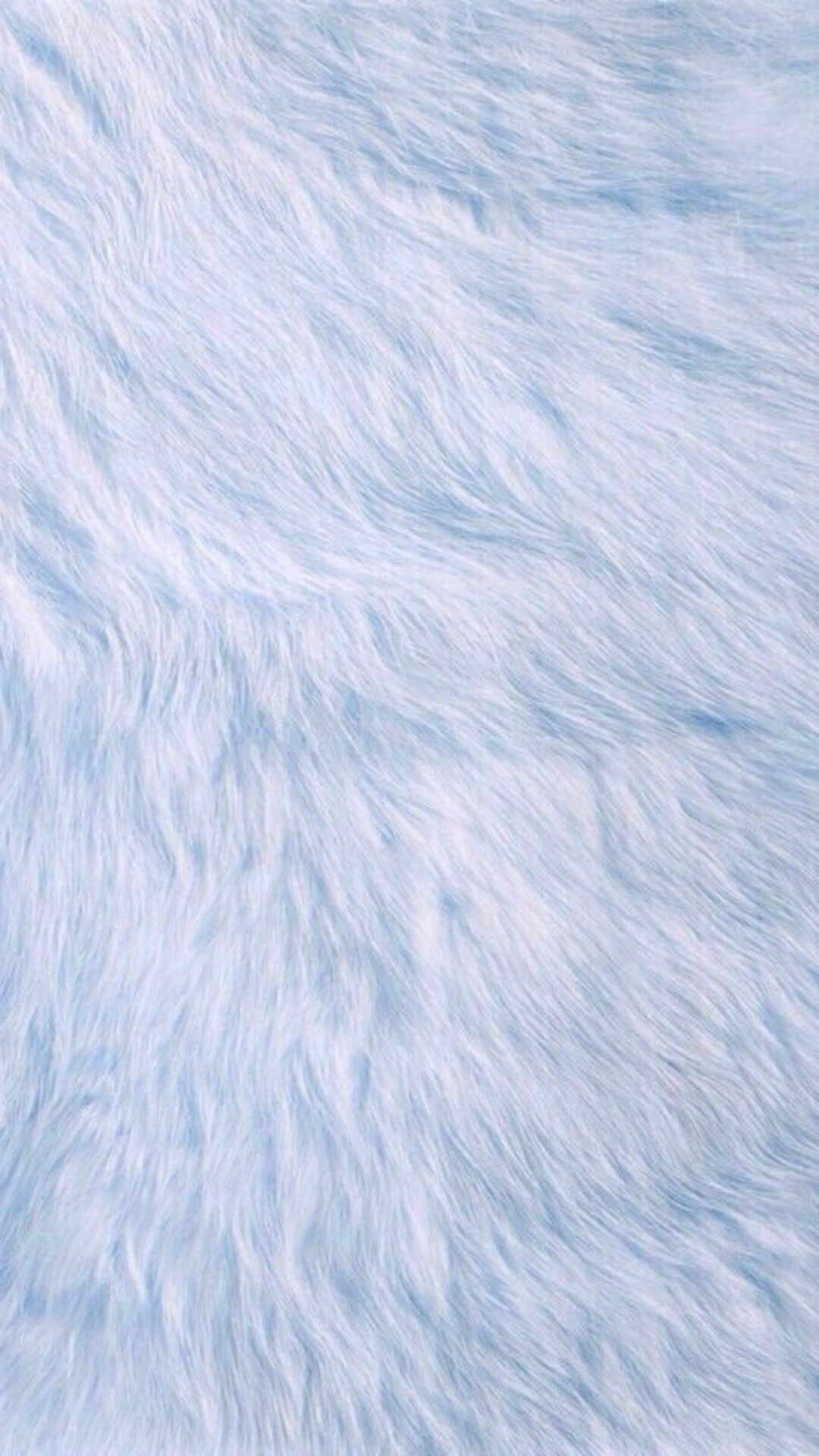 Baby Blue Fur iPhone Wallpaper Best iPhone Wallpaper