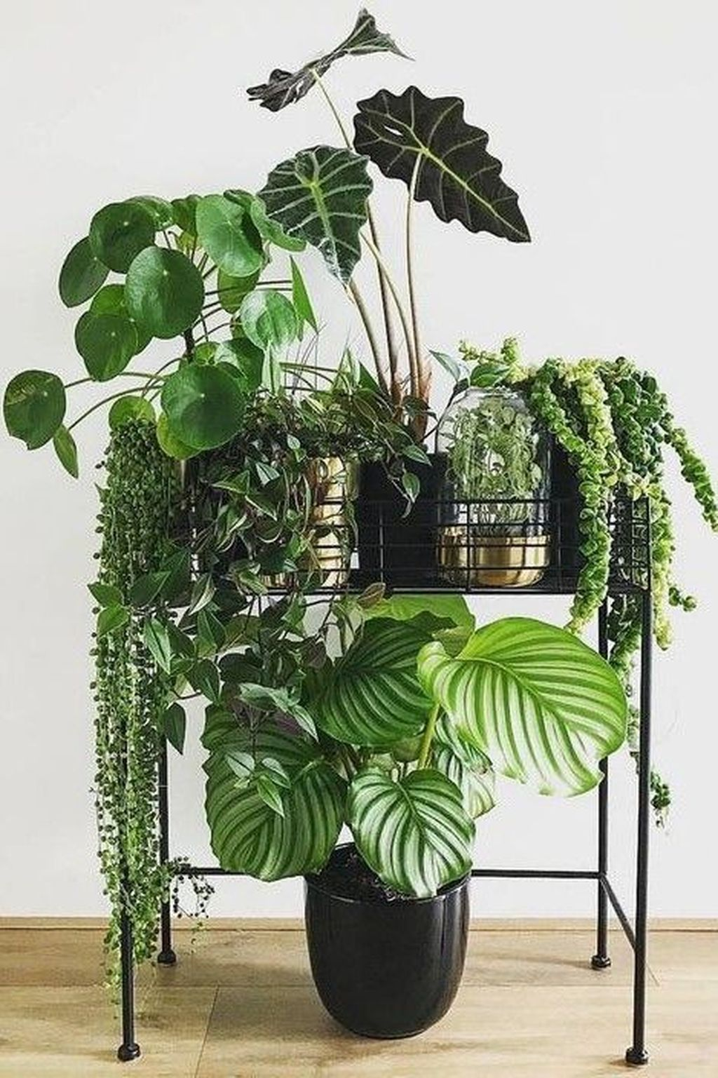 30 popular indoor plant stands ideas for fresh home