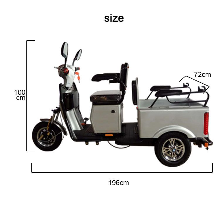 old people use small size cargo and passenger electric