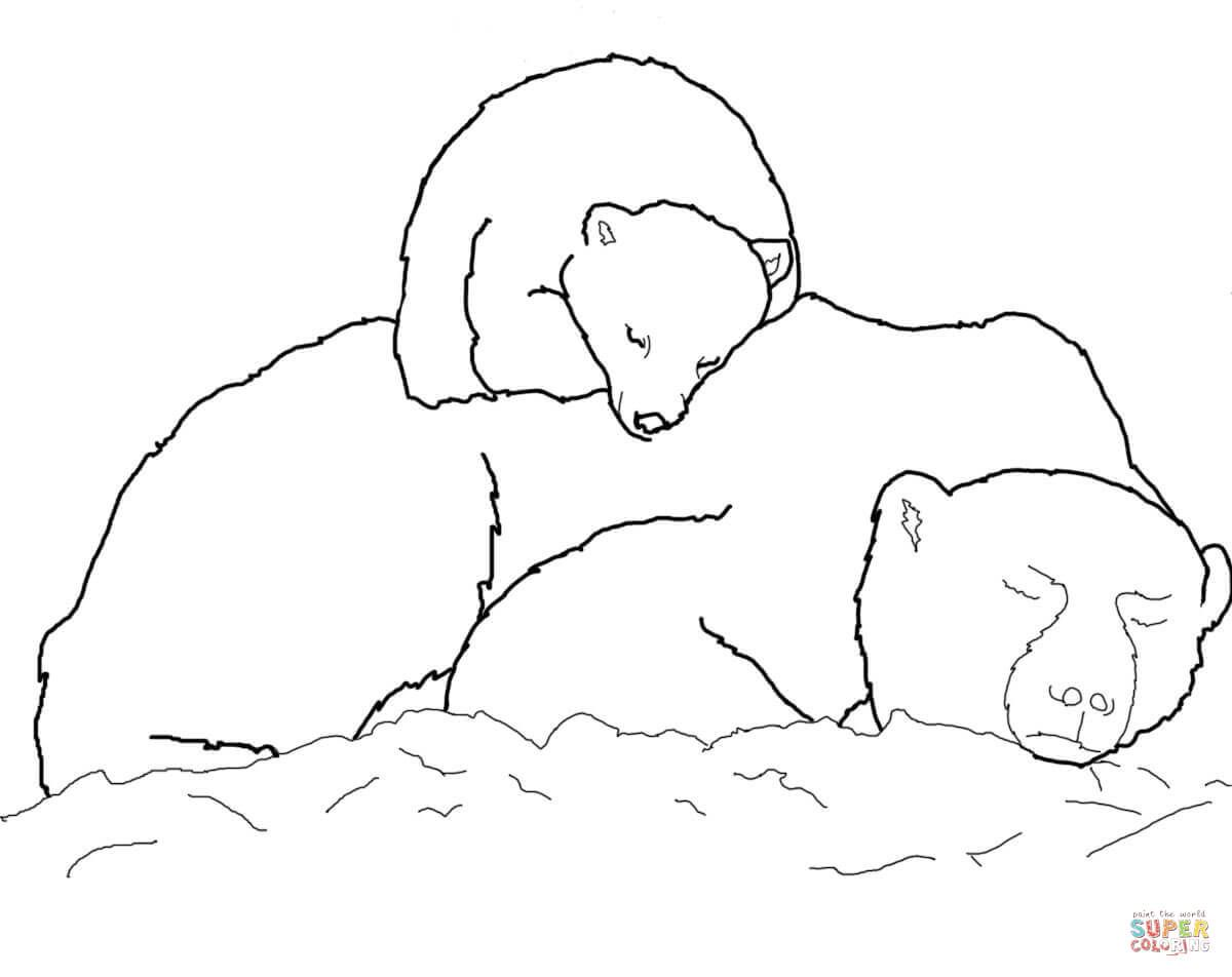 Polar Bear Cub Sleeping on Mother\'s Back coloring page from Polar ...