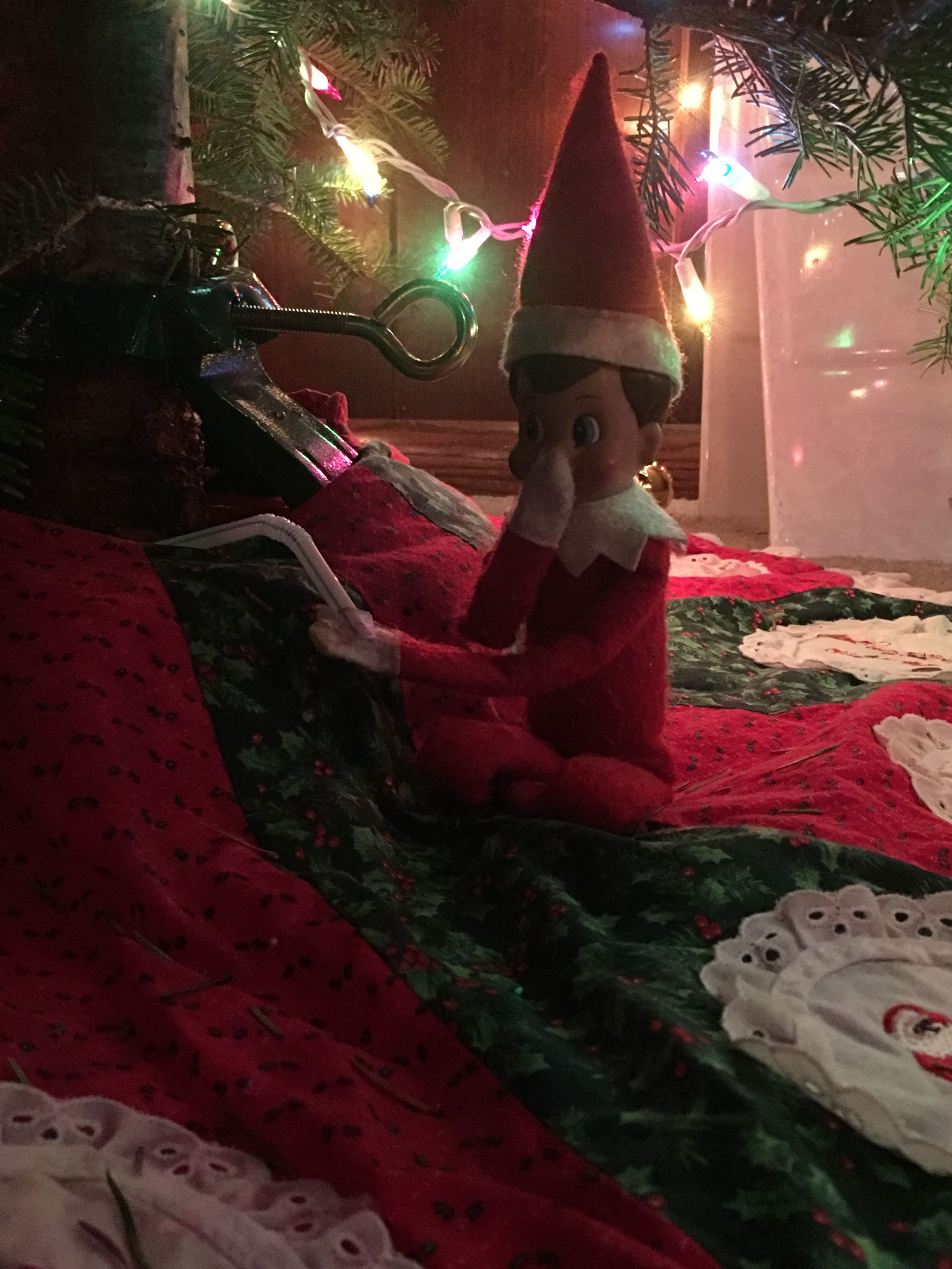 Elf On The Shelf Drinking Water From The Christmas Tree