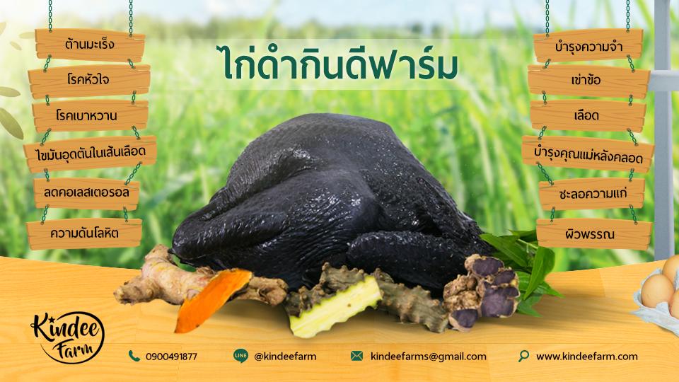 Pin By Thitipong Sriarporn On ไก ดำ อาหารหล งคลอด ไข ไก ดำ ไก กระด กดำ ไก ดำต นยาจ น ไก ต นยาจ น Fruit Food Farm