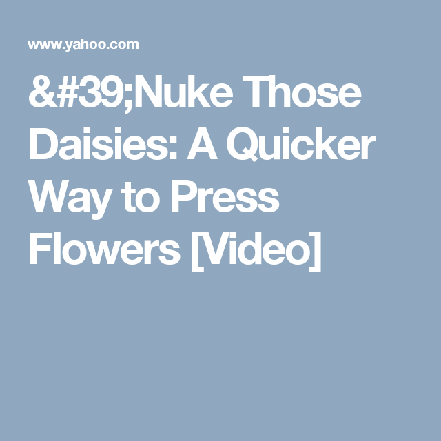 'Nuke Those Daisies: A Quicker Way to Press Flowers [Video]