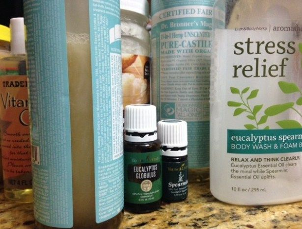 I absolutely love the Bath and Body Works Eucalyptus Spearmint Body wash and de