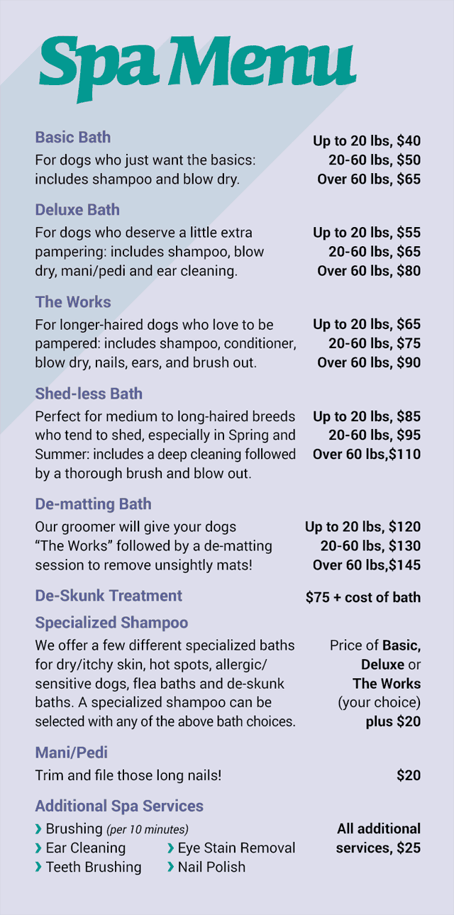 Dog Spa And Grooming Services In Oakland Happy Hound Pet Grooming Salon Dog Grooming Shop Dog Spa