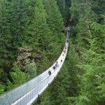 ¡Atención! si sufres de vértigo no cruces estos puentes (fotos)