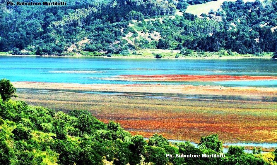 Calabria: il sole,la luce e i colori sono la vera magia del solstizio d'estate! Nei pressi della Riserva naturale del lago di Tarsia Ph.Salvatore Martilotti