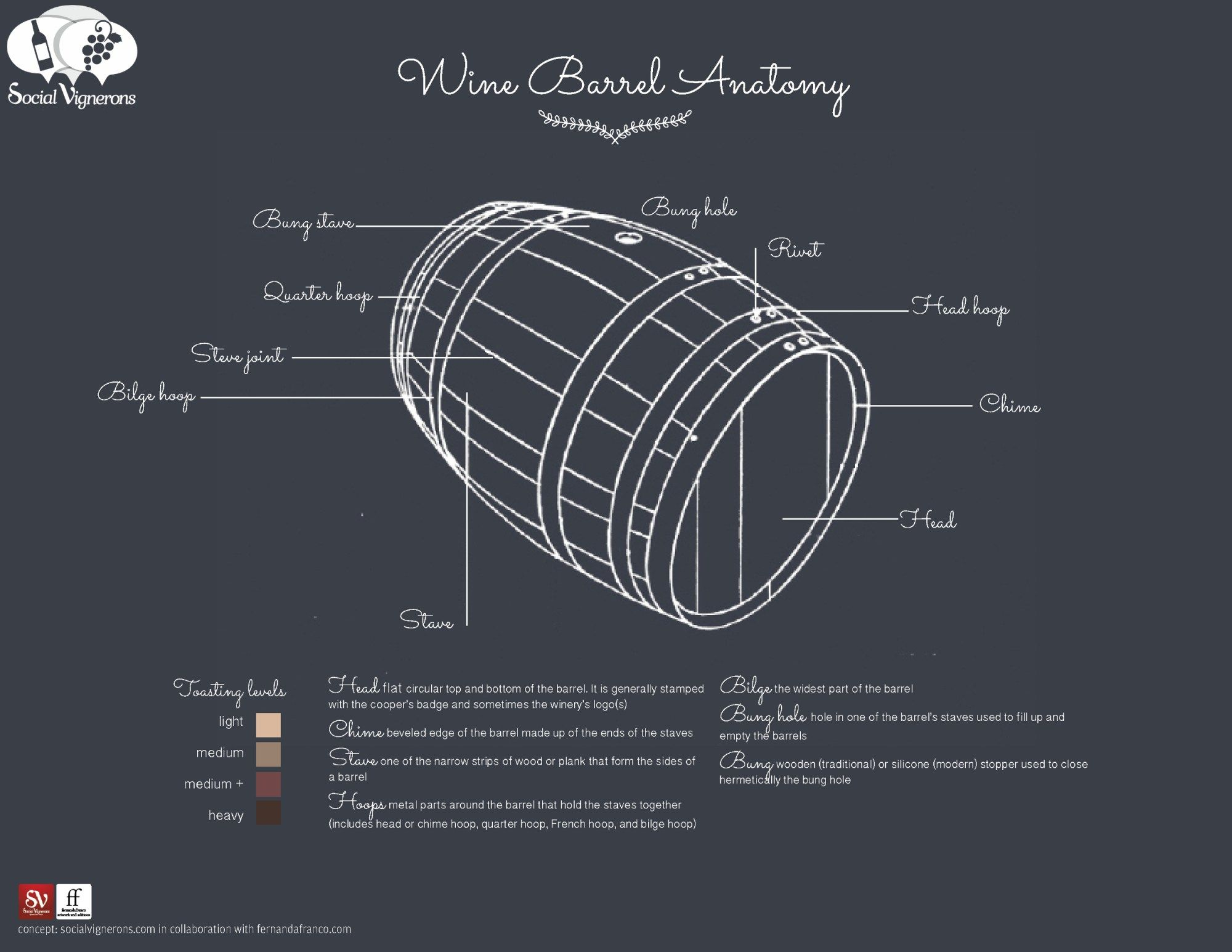 Anatomy Of A Wine Barrel Parts Sizes Infographic Wine
