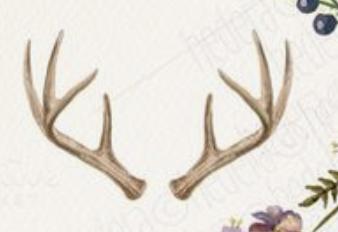 Antler Shape Apple Design Antlers Shapes