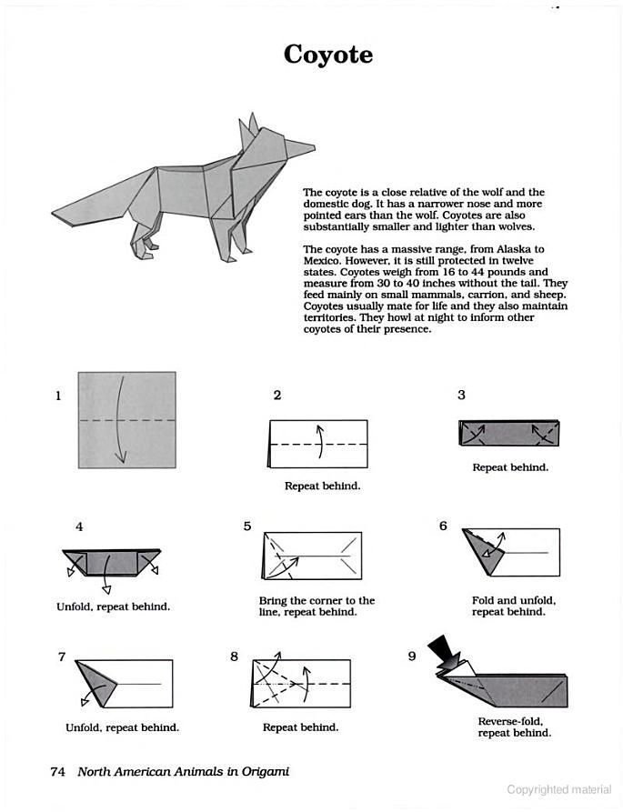 North American Animals In Origami