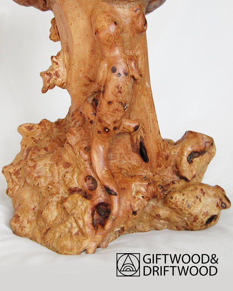 Pin by giftwoodanddriftwood on vases pinterest lizards and