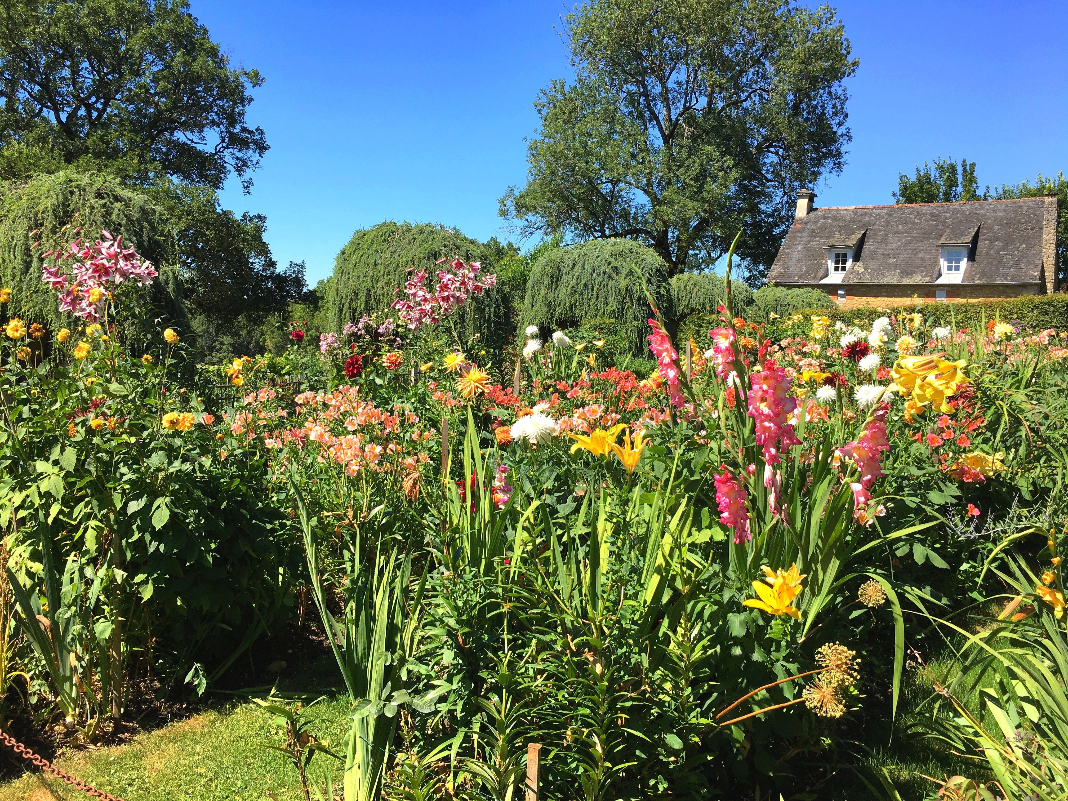Symphonie de couleurs au Jardin Fleuriste #eyrignac #fleurs ...