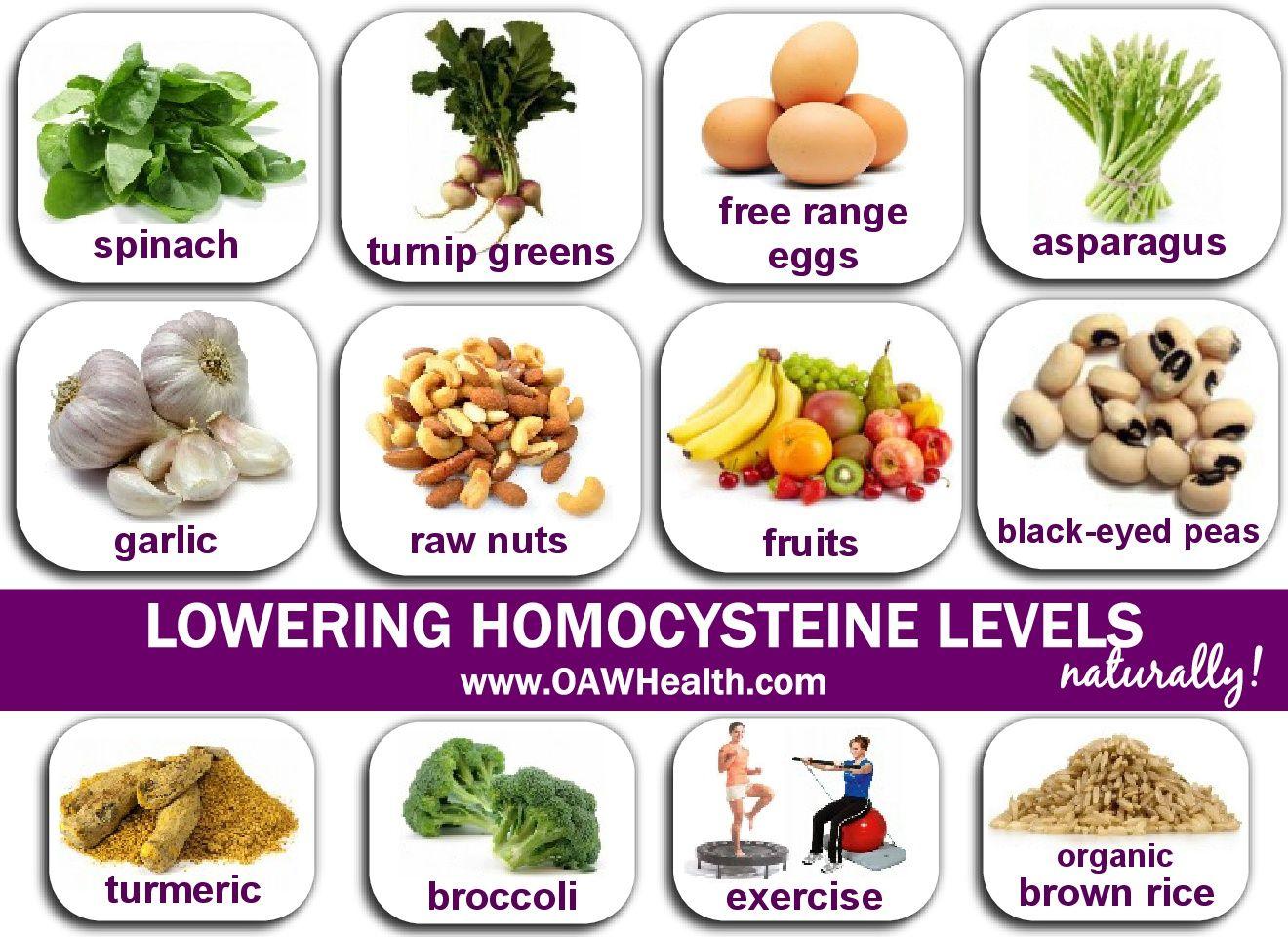 ketogenic diet and homocysteine