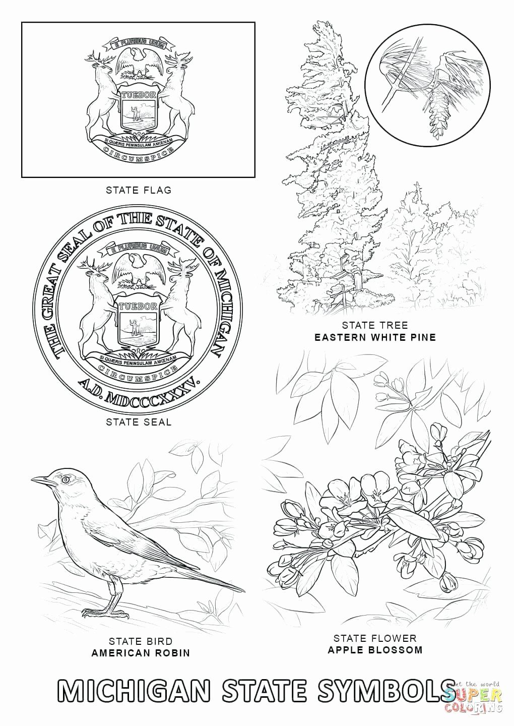 Ohio State Football Coloring Pages New North Carolina Coloring Pages Judekellyub In 2020 Flag Coloring Pages State Symbols Texas Symbols